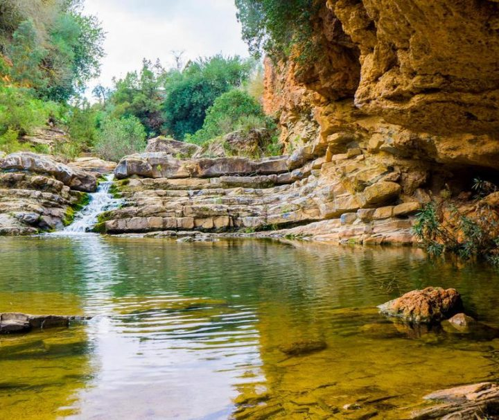 Excursione desde Marrakech al Valle de Ourika