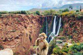 excursiones-desde-marrakech