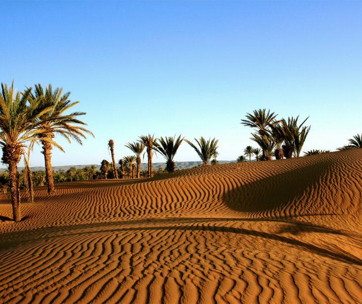 Ruta 5 Días desde Marrakech y desierto