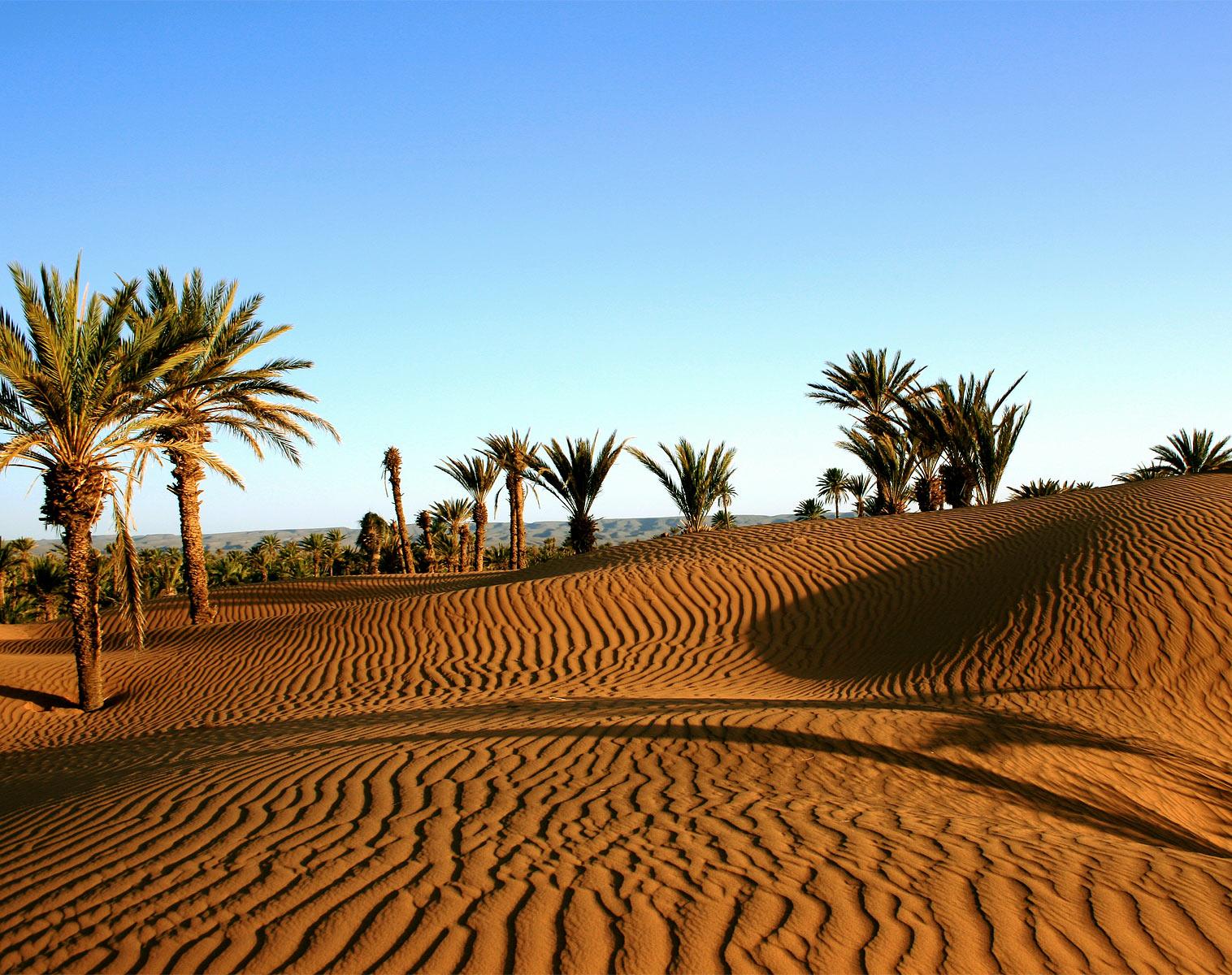 Viaje 5 dias desde Marrakech al Desierto